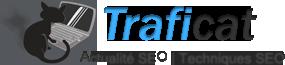 Traficat blog actualité et techniques SEO, référencement sur les moteurs de recherche