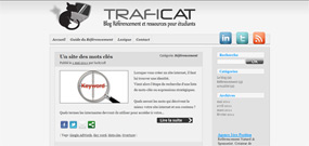 traficat blog referencement